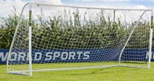 Professional Soccer Goal and Net